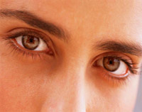 Vision begins when light rays are reflected off an object and enter the eyes through the cornea.